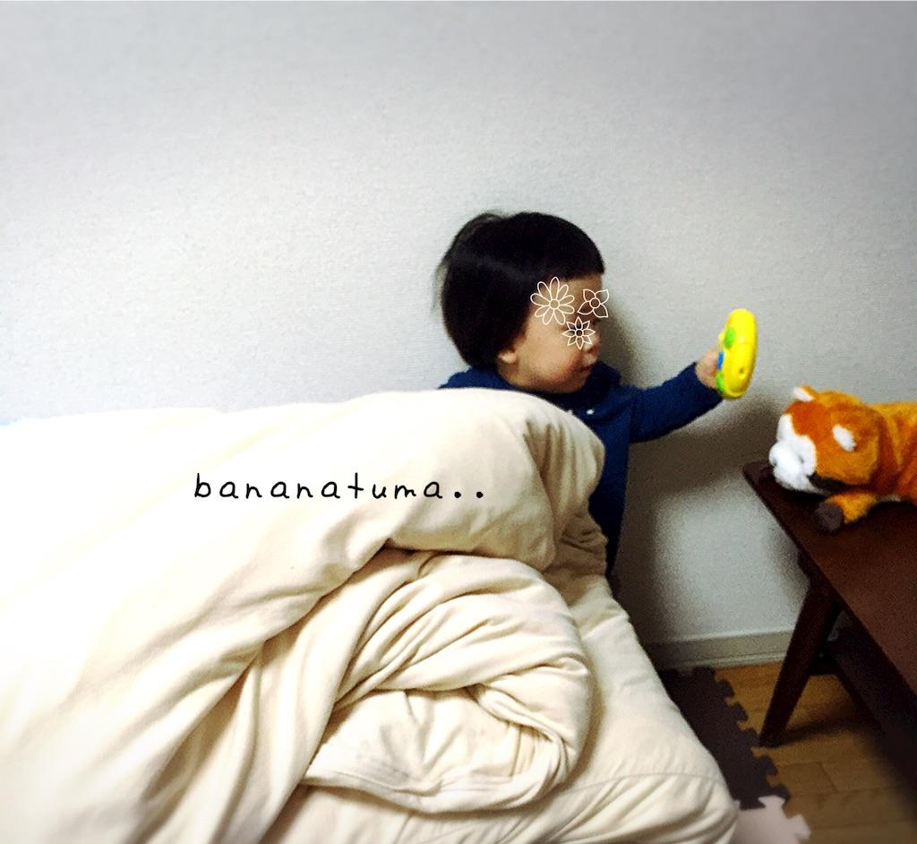 f:id:bananatuma:20151229211631j:image