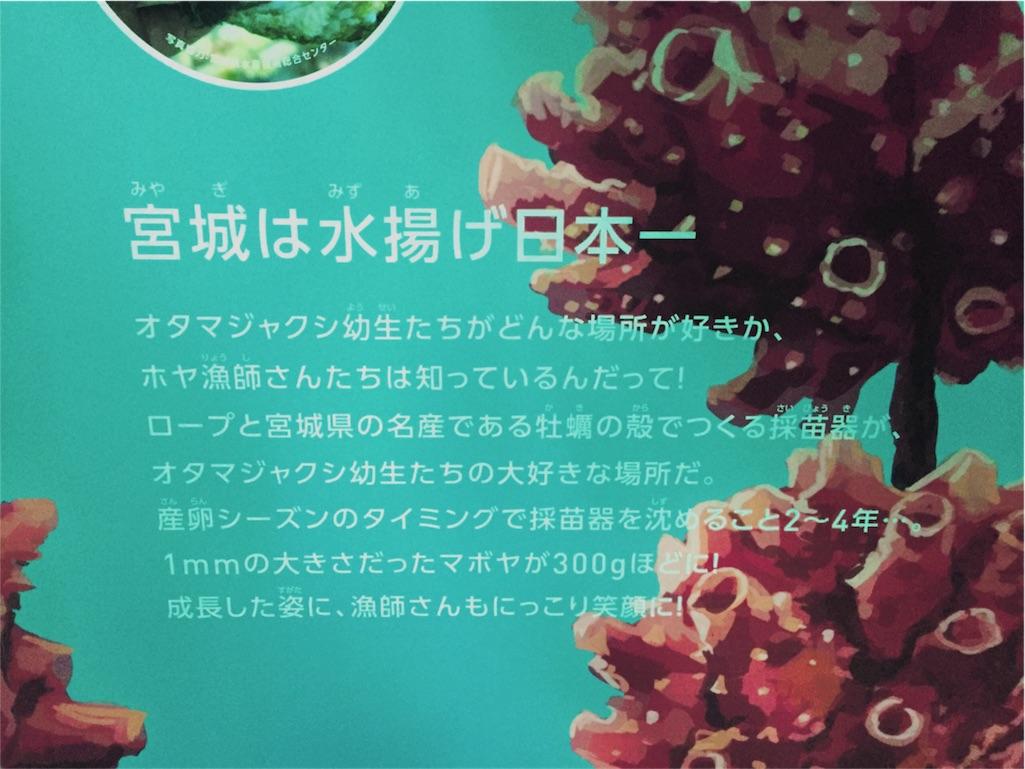 f:id:bananatuma:20161214160508j:image