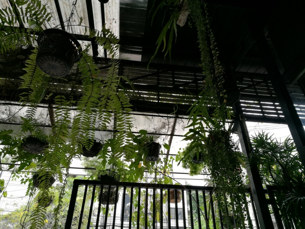 f:id:bangkoklife:20180215193055j:plain