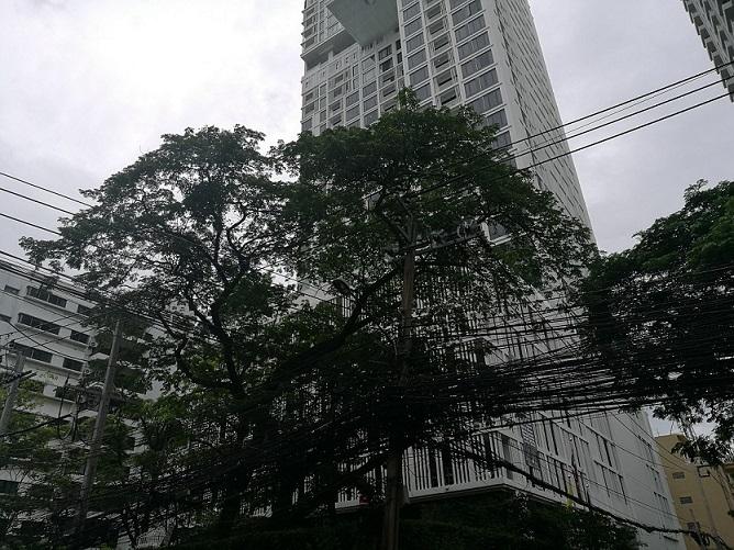 f:id:bangkoklife:20180610091344j:plain