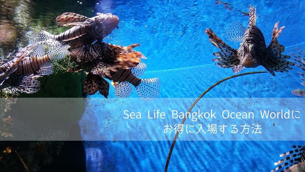f:id:bangkoklife:20190130232743j:plain
