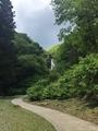 遊歩道からの滝