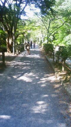f:id:banka-an:20100808152400j:image