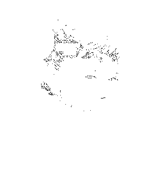 20150221205816