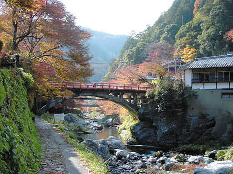 清滝川(西山コース)