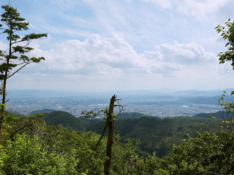 仏栗峠の展望
