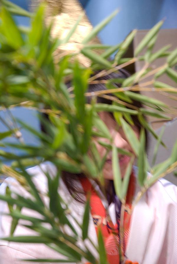 f:id:banriman:20080110002137j:image