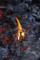 [山伏][修験道][奈良][吉野][金峰山寺][護摩][蔵王権現][役行者]