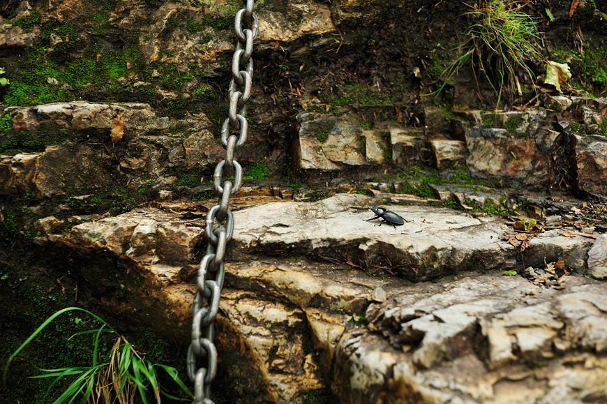 f:id:banriman:20120716210105j:image