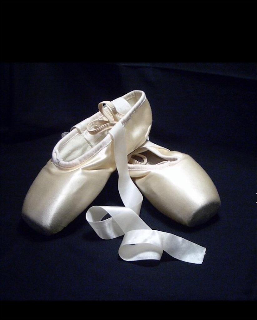 f:id:banyan-ballet:20160625092421j:image