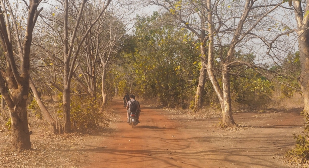 f:id:baobab-no-ki:20161230045759j:plain