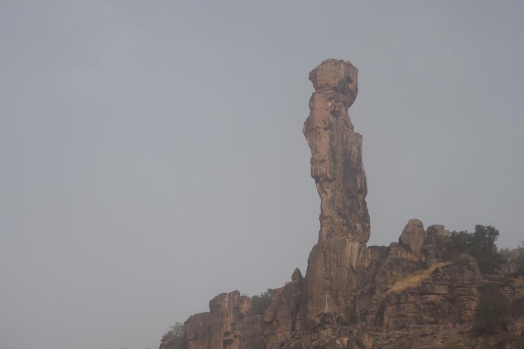 f:id:baobab-no-ki:20161230050334j:plain