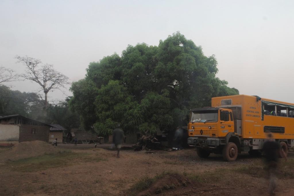 f:id:baobab-no-ki:20170113211223j:plain
