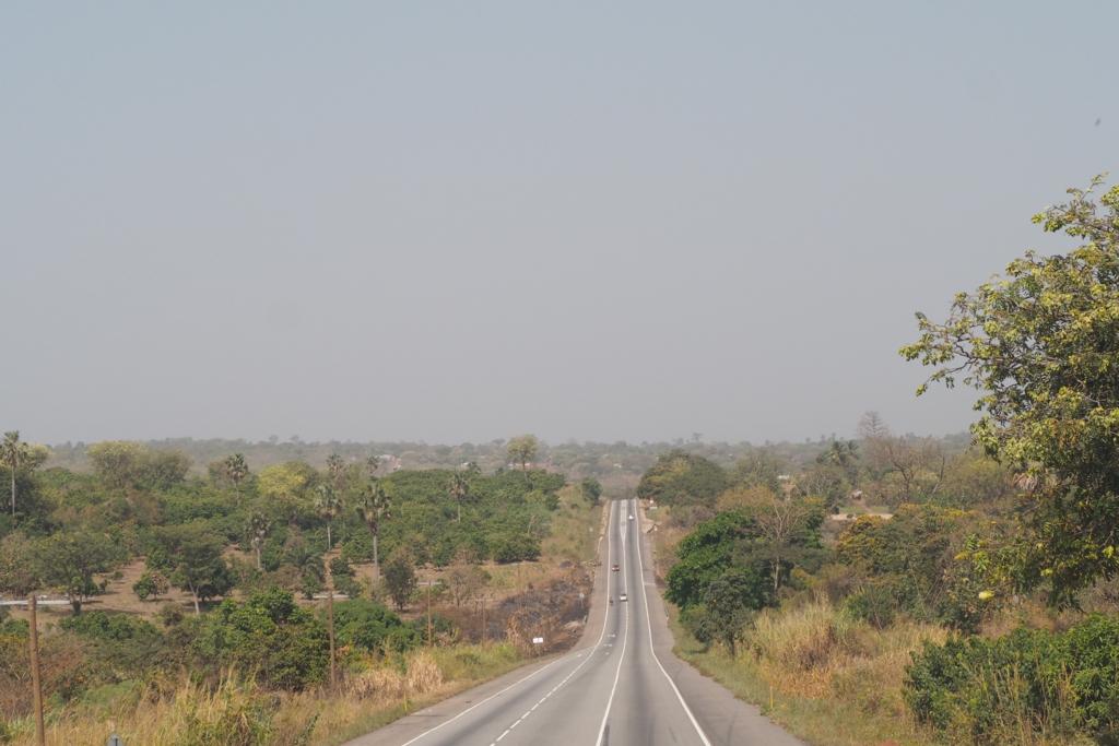 f:id:baobab-no-ki:20170118031543j:plain