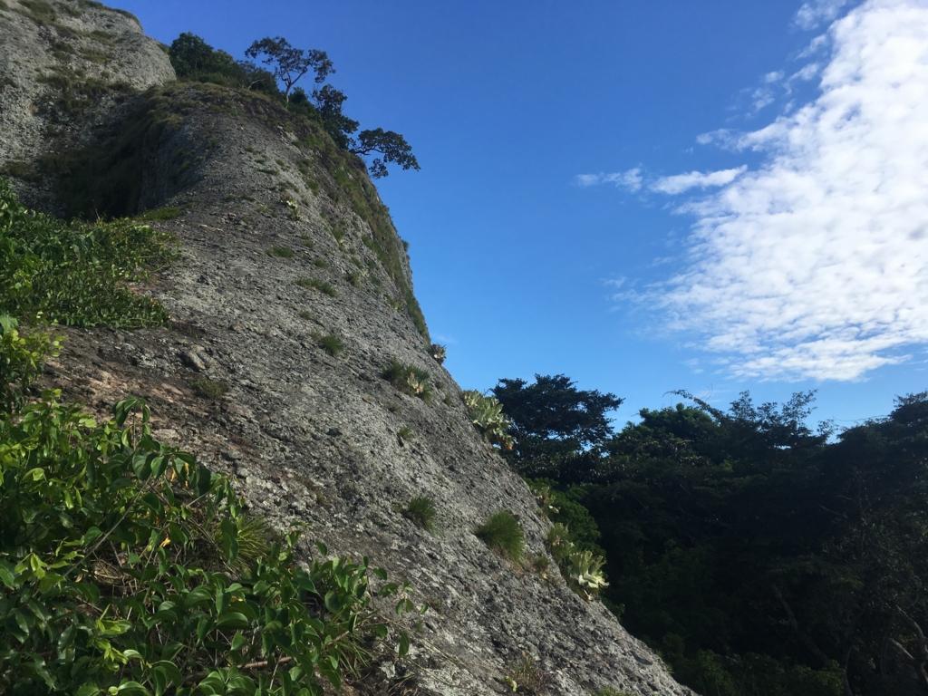 f:id:baobab-no-ki:20170323225550j:plain
