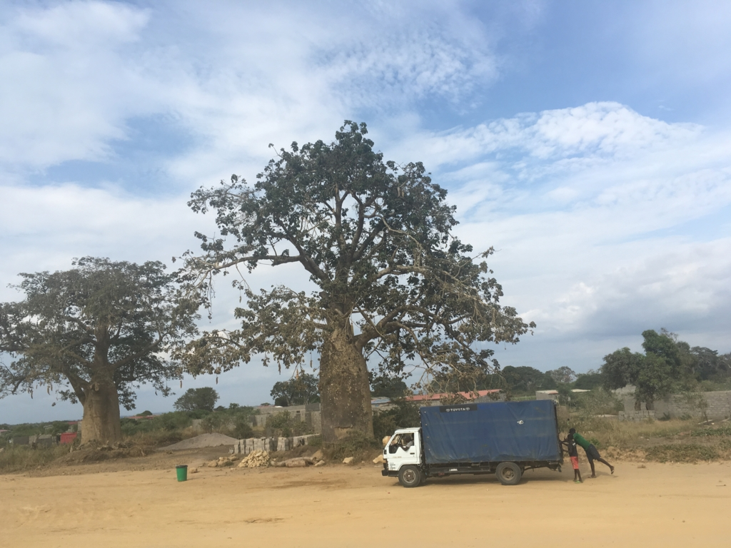 f:id:baobab-no-ki:20170405024352j:plain