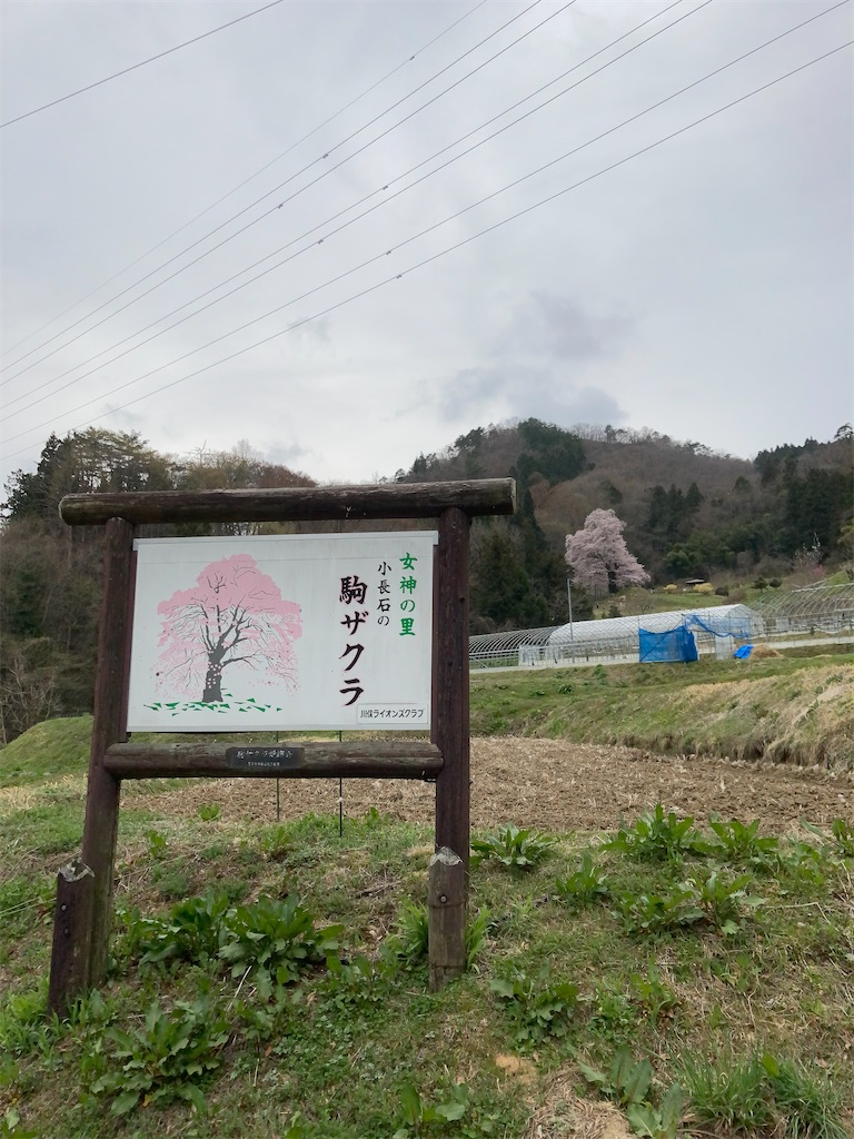 f:id:bar_yamagoya:20210406194322j:image