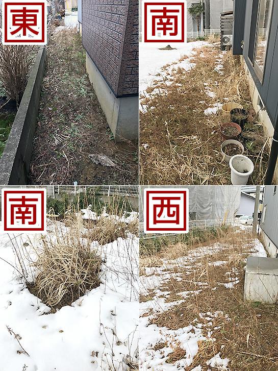 f:id:barzubureat:20170309012130j:plain