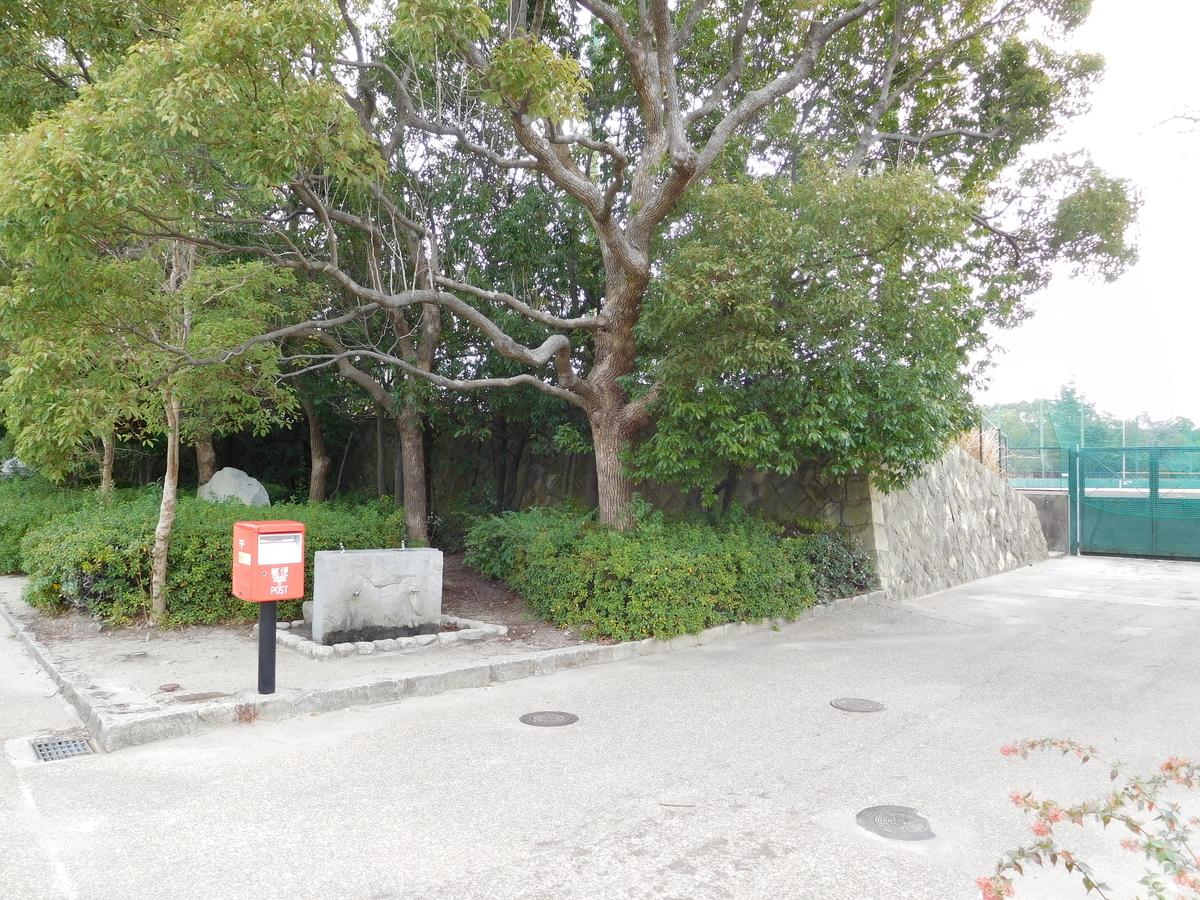 f:id:baseball-cafe:20200114200954j:image