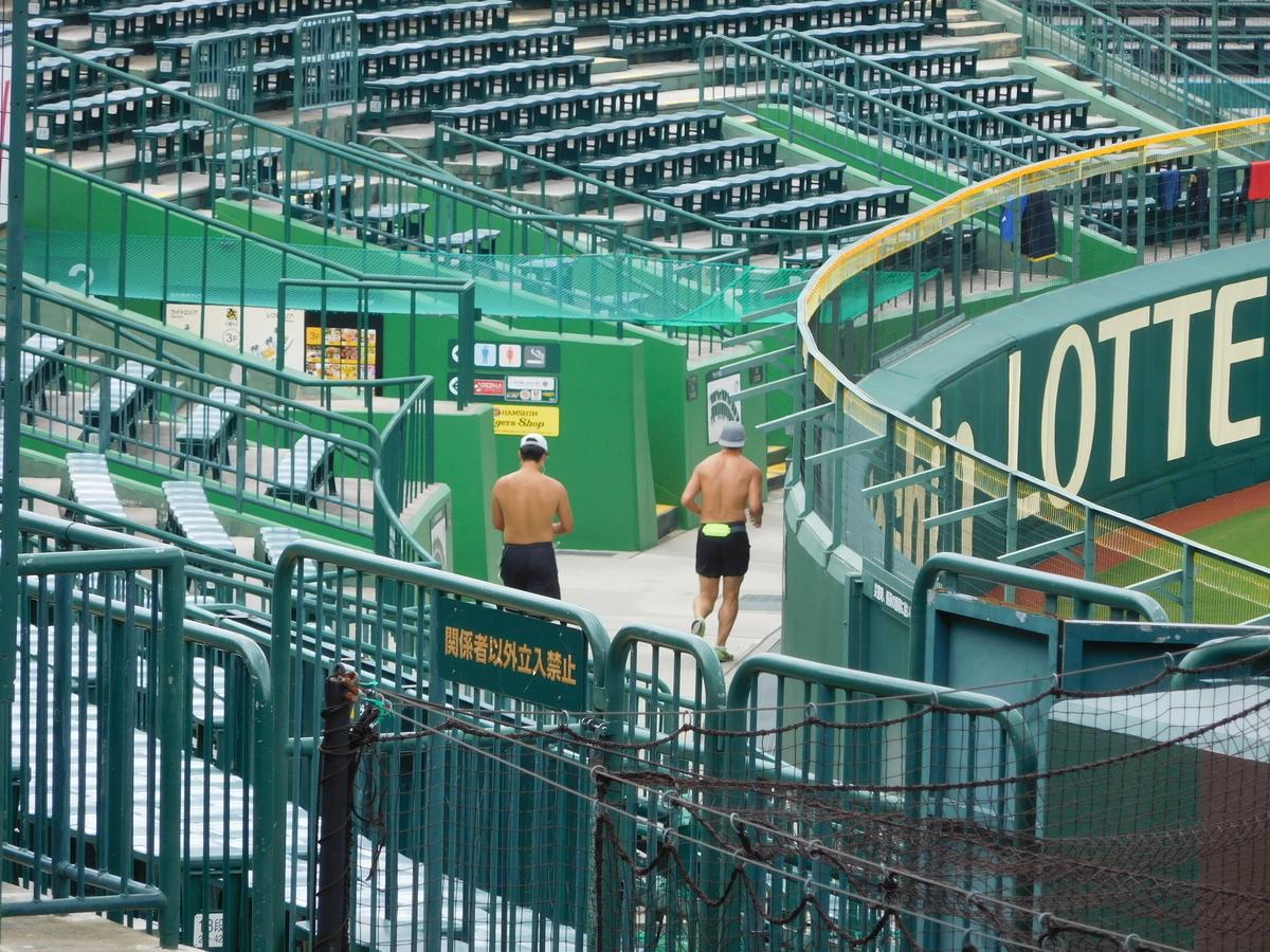 f:id:baseball-cafe:20200827145526j:image