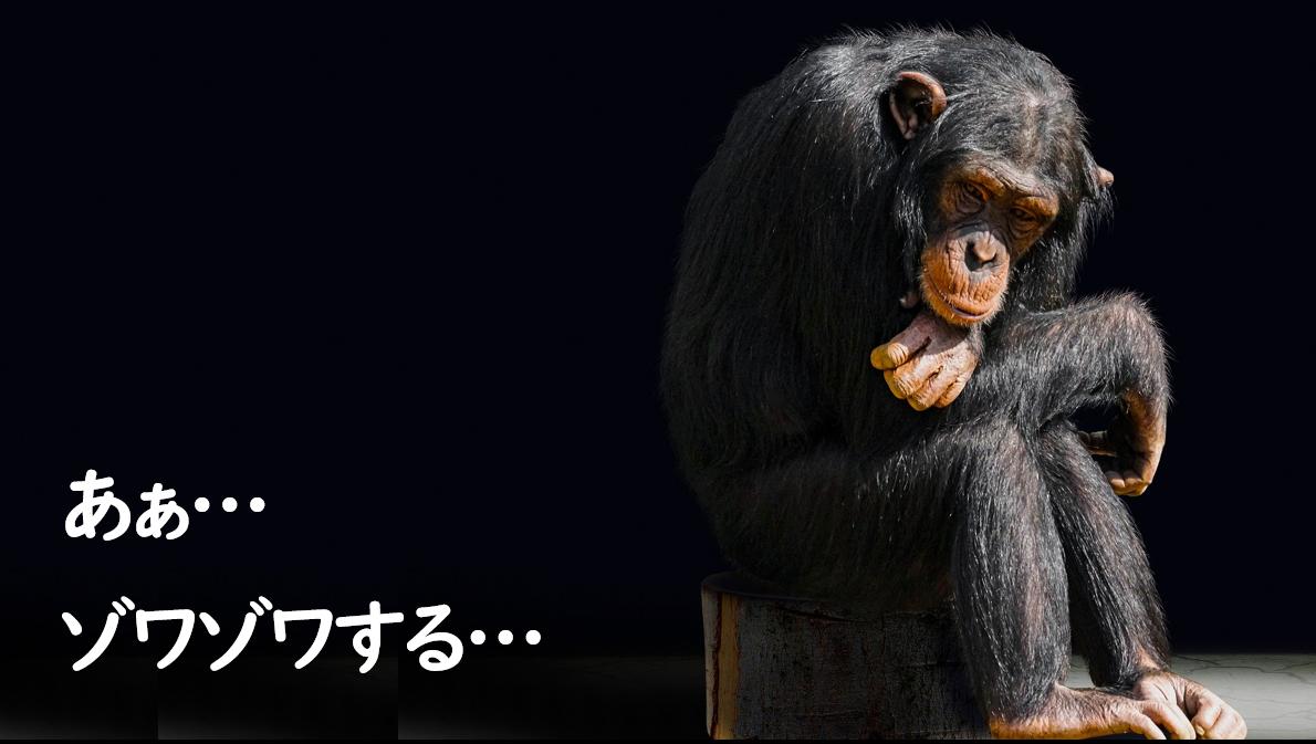 f:id:bashi_kurume:20200912163251p:plain