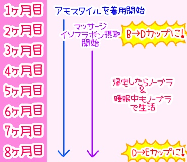 f:id:bashii:20190213012624j:plain