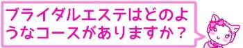 f:id:bashii:20190228210558j:plain