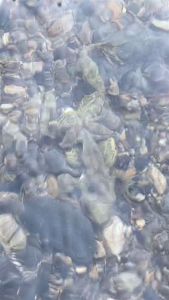 f:id:bassfishingfishing:20210506222612p:image