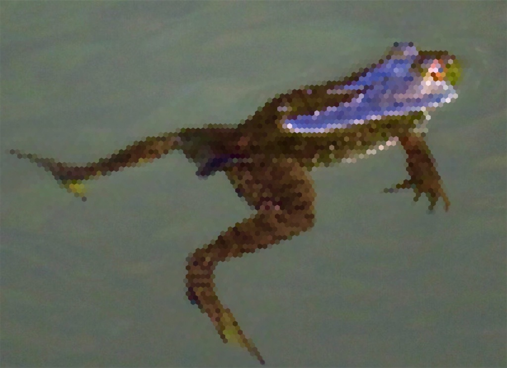f:id:bassfishingfishing:20210524120411j:image