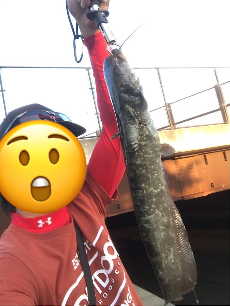 f:id:bassfishingfishing:20210531105323j:image