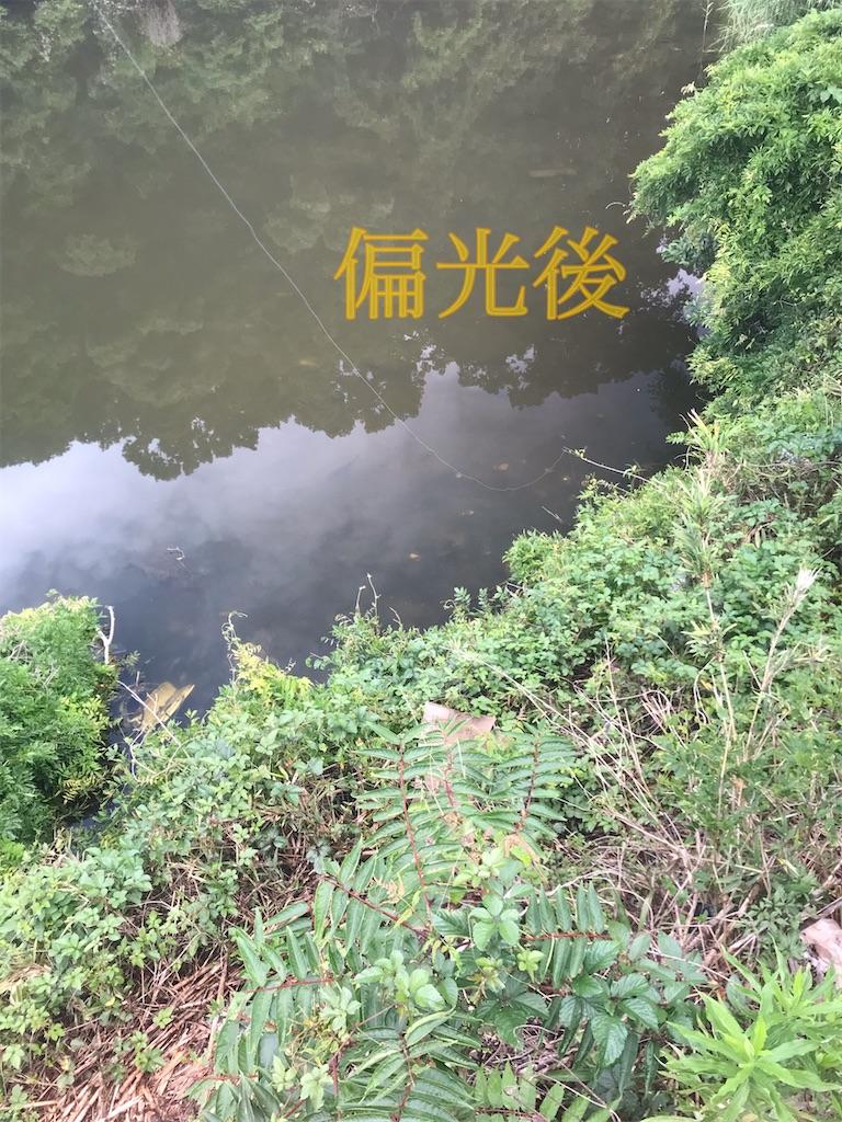 f:id:bassfishingfishing:20210606193106j:image