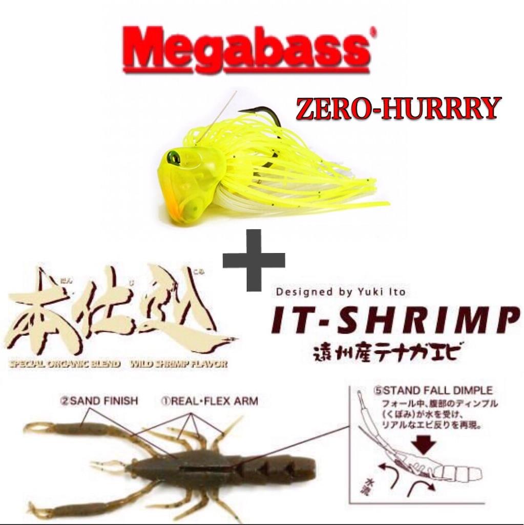 f:id:bassfishingfishing:20210606204601j:image