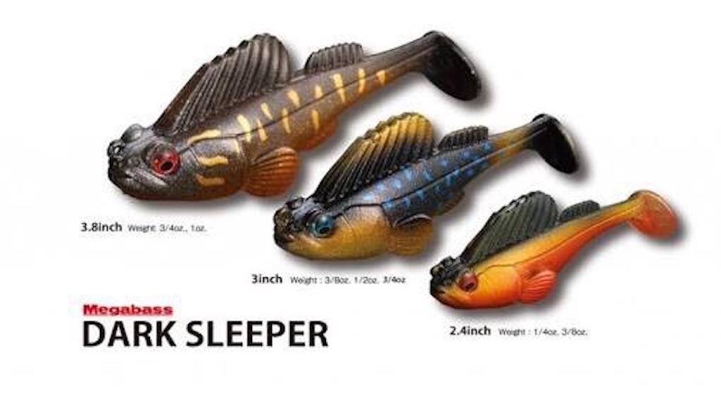 f:id:bassfishingfishing:20210606212929j:image