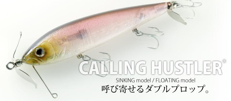 f:id:basssoku:20170726151929j:plain