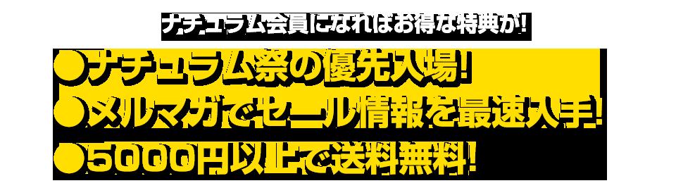 f:id:basssoku:20171130185034p:plain