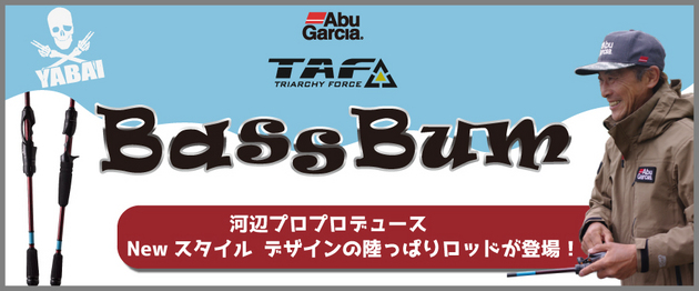 f:id:basssoku:20190201125019j:plain