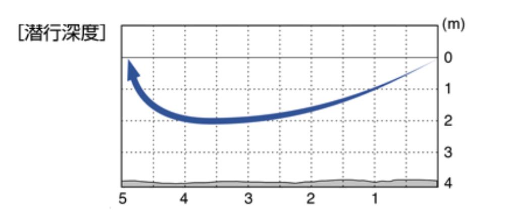 f:id:basssoku:20200211194912p:plain
