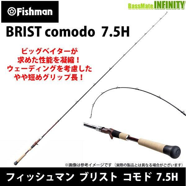 f:id:basssoku:20210213075935j:plain