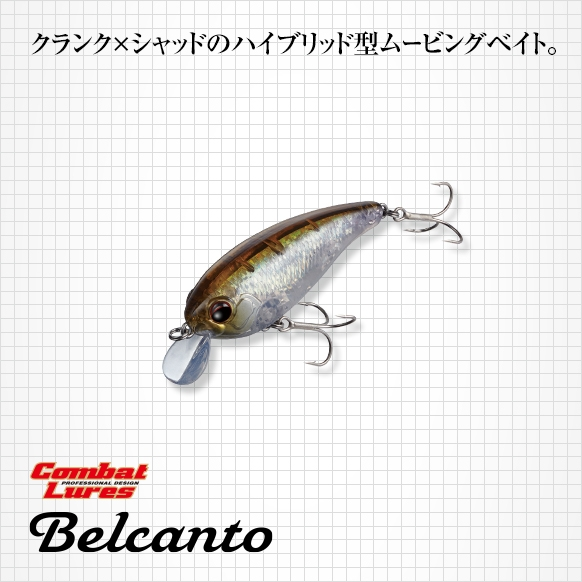 f:id:basssoku:20210602150908j:plain