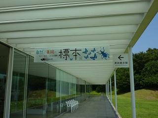 f:id:bata_sun:20160716085628j:plain