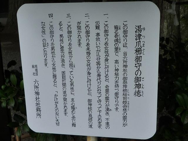 f:id:bata_sun:20161020190616j:plain