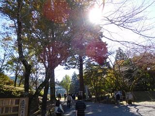 f:id:bata_sun:20161114181347j:plain