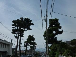 f:id:bata_sun:20161128202807j:plain