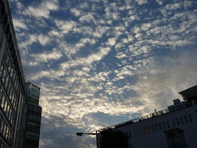 f:id:bata_sun:20161204194711j:plain