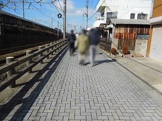 f:id:bata_sun:20170214113910j:plain
