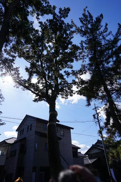 f:id:bata_sun:20170223133203j:plain