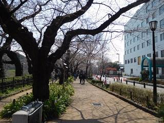 f:id:bata_sun:20170412193610j:plain