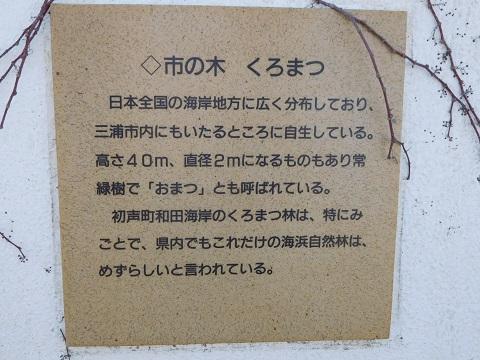 f:id:bata_sun:20170708153531j:plain