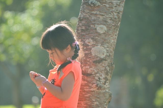 f:id:batabata-kaachan:20200204080424j:plain