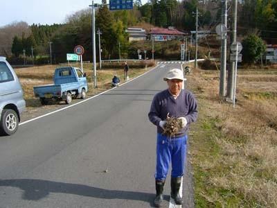 f:id:batomachi:20100323234312j:image
